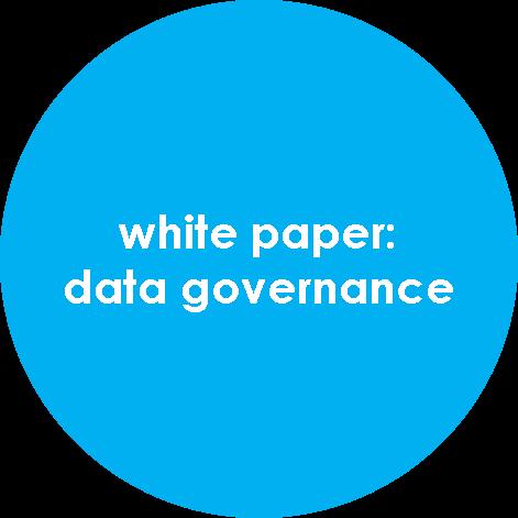 white paper: data governance